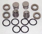 5251825 BEAN Pump valve kits for R10 , R5, R2020 A04, E04 I04 and RH10